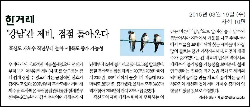 20150819 한겨레 강남간제비돌아온다.jpg